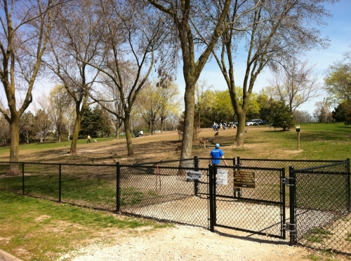 DOG PARTY!  There will be a 10-20 minute break between Section Six & Seven at Currie Dog Park.